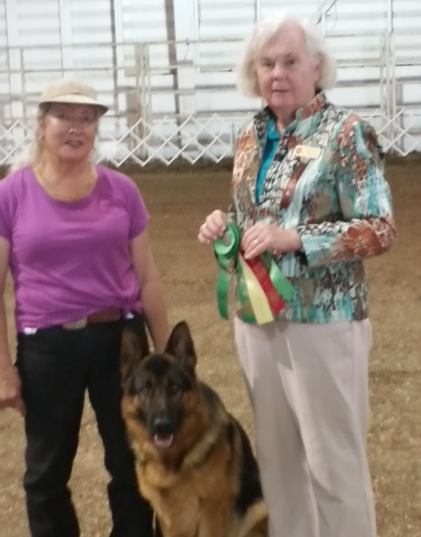 Owner Tina Woodworth with her German Shepherd JJ during dog obedience training in Washington State.